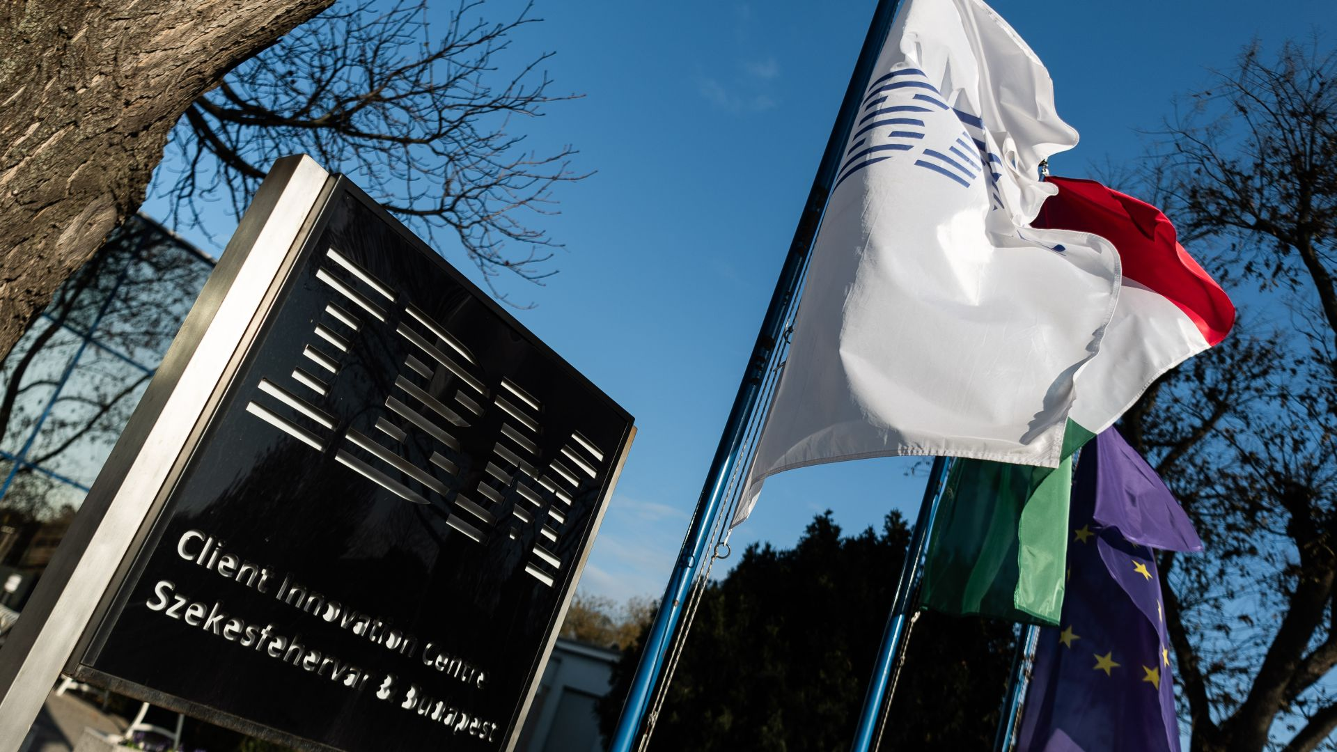 IBM is growing in Hungary - VIDEO REPORT